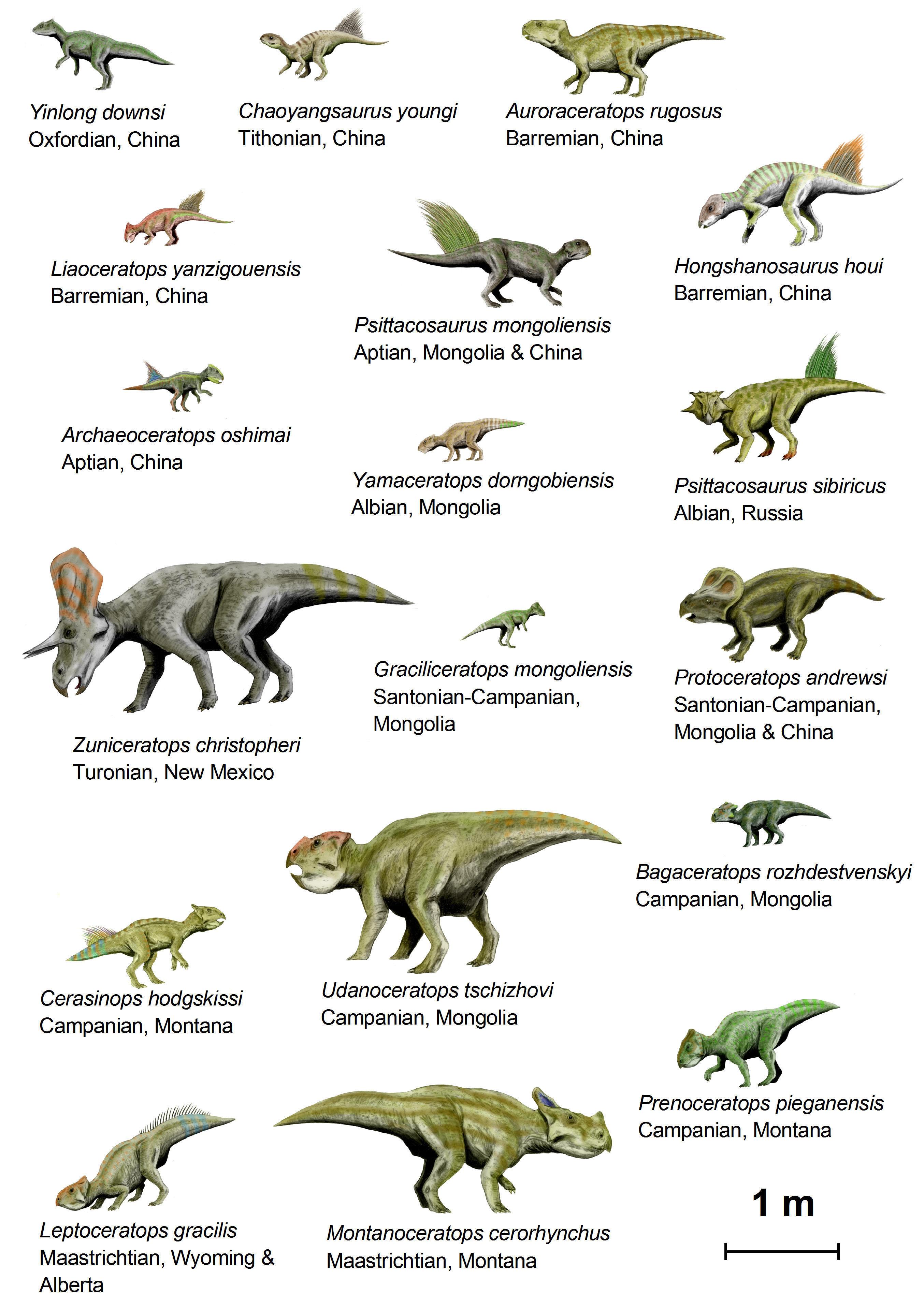 Imagen Dinosaurios