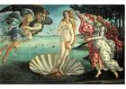 Imagen El nacimiento de Venus - Sandro Botticelli
