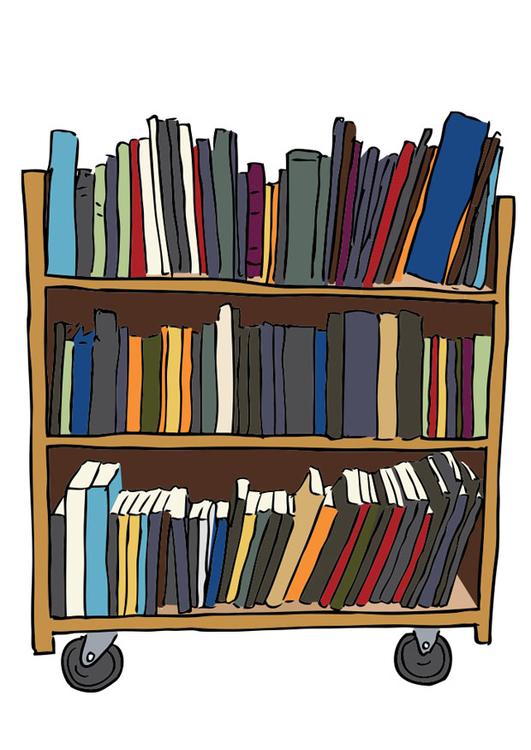 imagen estantera de libros