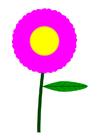 Imagen flor