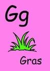 Imagen g