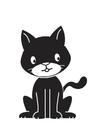 Imagen gato negro
