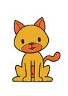 Imagen gato