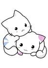 Imagen gatos
