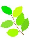 Imagen hojas de primavera