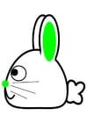 Imagen lateral de conejo