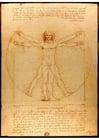 Imagen Leonardo da Vinci - Hombre de Vitrubio