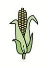 Imagen maíz