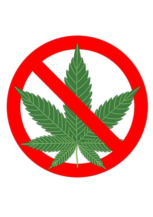 Imagen Marihuana Prohibida