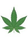 Imagen marihuana