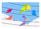 Imagen pájaros