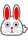 Imagen parte frontal de conejo