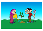 Imagen plantar un árbol