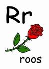 Imagen r