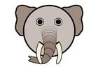 Imagen r1 - elefante