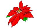 Imagen rosa de navidad