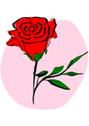 Imagen rosa roja