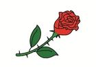 Imagen rosa