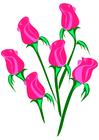 Imagen rosas