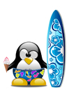Imagen surfear