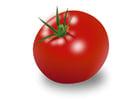 Imagen tomate
