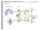 Manualidades Familia espacial, parte 2